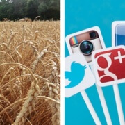 Landwirtschaft Social Media Marketing